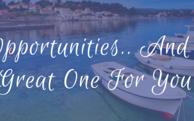 Opportunities… and a great one for YOU!