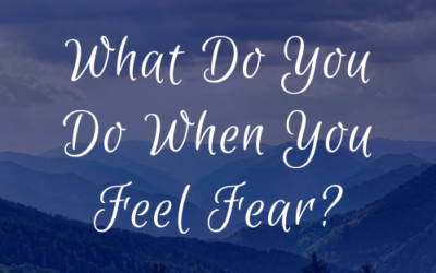 What Do You Do When You Feel Fear?