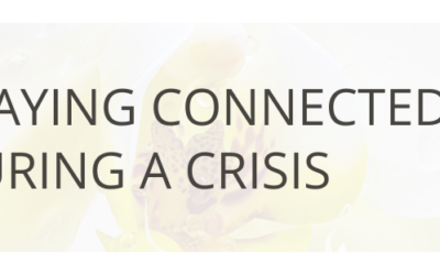 Staying Connected During a Crisis